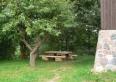 stół pod jabłonką