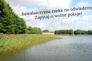 SuwalszczyznaInfo.pl z jeszcze lepszą wyszukiwarką!
