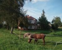 Agroturystyka EGLE koło Sejn 7 km od granicy z Litwą