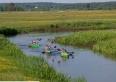 spływ kajakowy rzeką Biebrzą